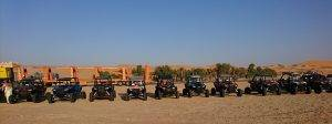 Buggy Tours in Liwa